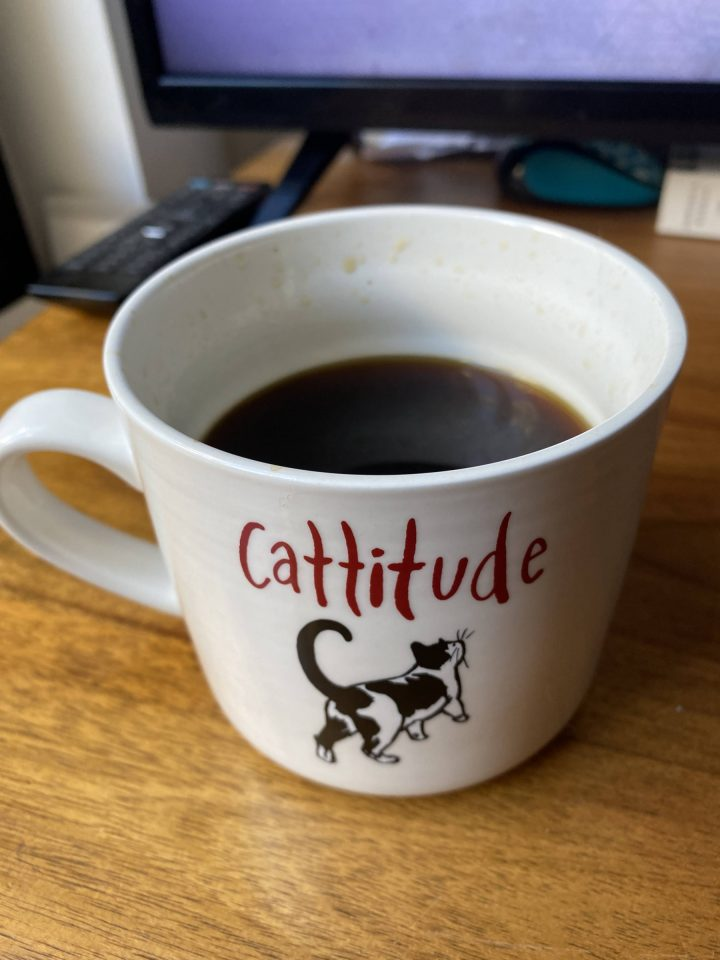 """A Mug Of Coffee With """"Cattitude"""" Written Above A Black And White Cat."""